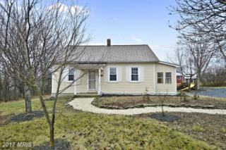 2509 Green Valley Road, Clarksburg, MD 20871 (#FR9930737) :: Pearson Smith Realty