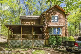 15664 Kelbaugh Road, Thurmont, MD 21788 (#FR9931874) :: The Speicher Group of Long & Foster Real Estate