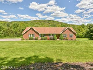 10831 Easterday Road, Myersville, MD 21773 (#FR9932479) :: Pearson Smith Realty