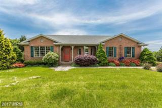 4709-S Reyburn Court, Mount Airy, MD 21771 (#FR9933809) :: Pearson Smith Realty