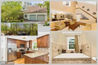 5730 Woodfount Glade, New Market, MD 21774 (#FR9933867) :: Pearson Smith Realty