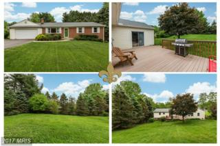 11805 Browningsville Road, Monrovia, MD 21770 (#FR9934918) :: Pearson Smith Realty