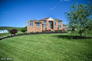4320 Valley View Road, Middletown, MD 21769 (#FR9936750) :: Pearson Smith Realty