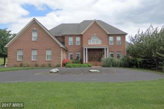 8404 River Meadow Drive, Frederick, MD 21704 (#FR9937108) :: Pearson Smith Realty