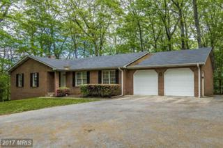 10522 Rolling Green Court, Clarksburg, MD 20871 (#FR9937574) :: Pearson Smith Realty
