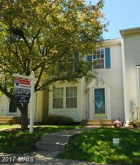 6659 Canada Goose Court, Frederick, MD 21703 (#FR9937952) :: Pearson Smith Realty