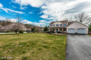 4601 Basset Place, Middletown, MD 21769 (#FR9938157) :: Pearson Smith Realty