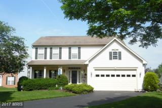 95 Harrison Court, Frederick, MD 21702 (#FR9942889) :: Pearson Smith Realty