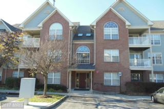 6505 Springwater Court #7301, Frederick, MD 21701 (#FR9943633) :: Pearson Smith Realty