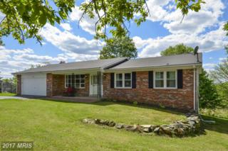 3676 Ridgeview Road, Ijamsville, MD 21754 (#FR9943892) :: Pearson Smith Realty