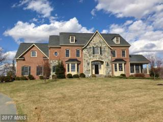 11306 Daysville Road, Frederick, MD 21701 (#FR9945622) :: Pearson Smith Realty