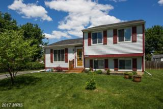 6710 Grainary Court, Frederick, MD 21703 (#FR9947306) :: Pearson Smith Realty