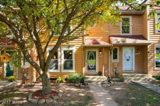 6618 East Beach Drive, New Market, MD 21774 (#FR9947822) :: Pearson Smith Realty