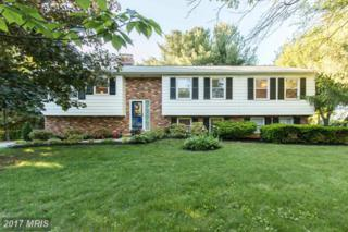 13796 Blythedale Drive, Mount Airy, MD 21771 (#FR9948150) :: Pearson Smith Realty