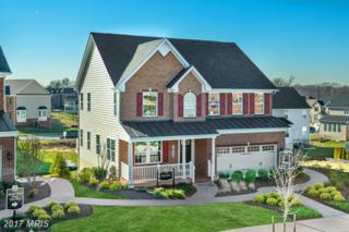 303 Conundrum Court, Frederick, MD 21702 (#FR9953254) :: Pearson Smith Realty
