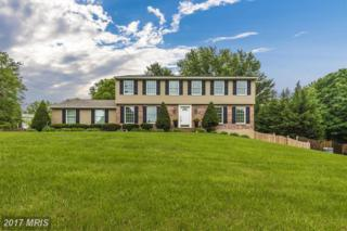 7001 Willow Tree Drive S, Middletown, MD 21769 (#FR9953293) :: ExecuHome Realty