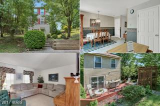 3507 Cemetery Circle, Knoxville, MD 21758 (#FR9954817) :: Pearson Smith Realty