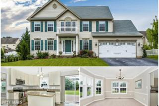 62 Pleasant Acres Drive, Thurmont, MD 21788 (#FR9956130) :: Pearson Smith Realty