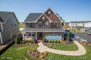 5852 Broad Branch Way, Frederick, MD 21704 (#FR9956381) :: Pearson Smith Realty