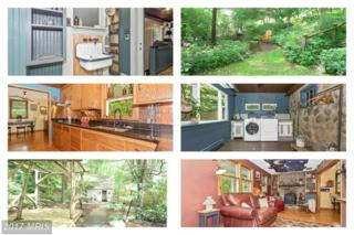 10910 Wolfsville Road, Myersville, MD 21773 (#FR9957007) :: A-K Real Estate