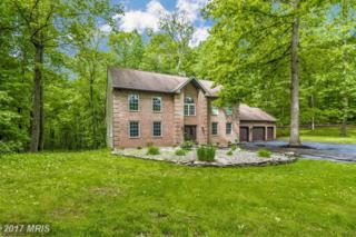 14435 Unionville Road, Mount Airy, MD 21771 (#FR9958423) :: Pearson Smith Realty