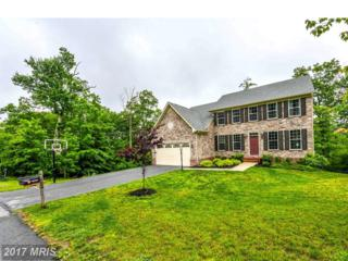 6707 Accipiter Drive, New Market, MD 21774 (#FR9958931) :: Pearson Smith Realty