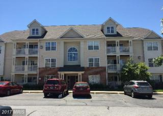 6343 Springwater Terrace #1031, Frederick, MD 21701 (#FR9959558) :: Pearson Smith Realty