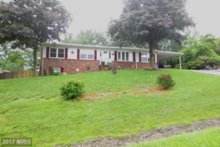 5321 Legion Drive, Mount Airy, MD 21771 (#FR9959804) :: Pearson Smith Realty