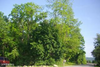 Locust Dr, Mcconnellsburg, PA 17233 (#FU9868397) :: Pearson Smith Realty