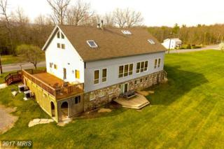 512 Breezy Point Road, Mcconnellsburg, PA 17233 (#FU9914426) :: Pearson Smith Realty