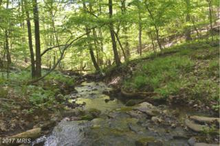 LOT 38 Poplar Hill Drive, Mcconnellsburg, PA 17233 (#FU9948923) :: Pearson Smith Realty