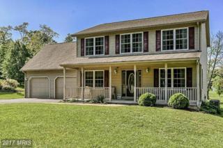 101 Patterson Street E, Mcconnellsburg, PA 17233 (#FU9955166) :: Pearson Smith Realty