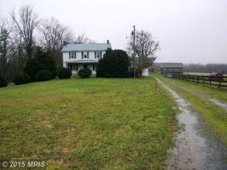 766 Gough Road, Winchester, VA 22602 (#FV9538663) :: Pearson Smith Realty