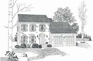 LOT 1 Willa Cather Lane, Gore, VA 22637 (#FV9659575) :: Pearson Smith Realty