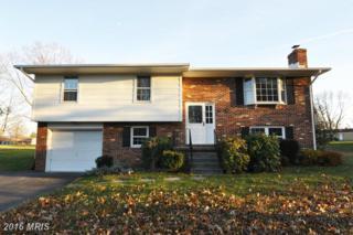 106 Lane Street, Stephens City, VA 22655 (#FV9824044) :: Pearson Smith Realty