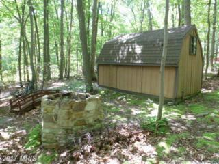 Lot 24 Pheasant Drive, Winchester, VA 22602 (#FV9836585) :: LoCoMusings