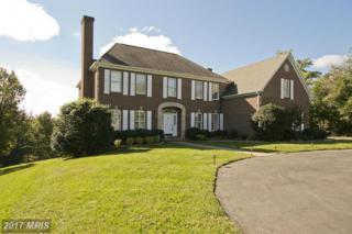 365 Windsor Lane, Winchester, VA 22602 (#FV9846699) :: Pearson Smith Realty