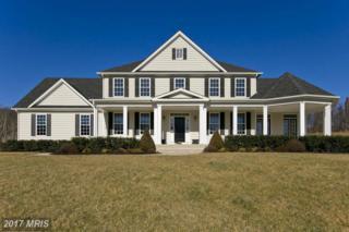 165 Cameo Terrace, Winchester, VA 22603 (#FV9848930) :: LoCoMusings