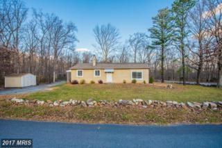 316 Mountain Lodge Drive, Winchester, VA 22602 (#FV9852615) :: LoCoMusings
