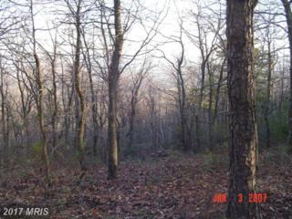 Lot 349 Archwood, Winchester, VA 22602 (#FV9857158) :: LoCoMusings