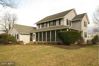 241 Clayhill Drive, Winchester, VA 22602 (#FV9858909) :: LoCoMusings