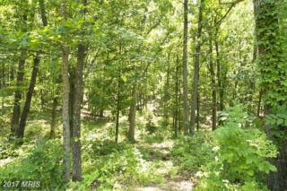 11 Wayside Mill Lane, Middletown, VA 22645 (#FV9862399) :: LoCoMusings