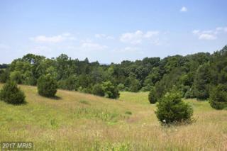13 Wayside Mill Lane, Middletown, VA 22645 (#FV9862400) :: LoCoMusings