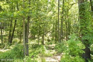 10 Wayside Mill Lane, Middletown, VA 22645 (#FV9862401) :: LoCoMusings