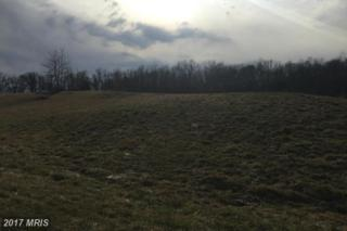 Chimney Circle, Middletown, VA 22645 (#FV9864169) :: LoCoMusings