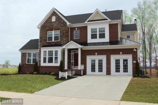 Ladysmith Drive, Stephens City, VA 22655 (#FV9868432) :: Pearson Smith Realty