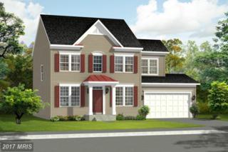 Colonial Drive, Cross Junction, VA 22625 (#FV9868512) :: LoCoMusings