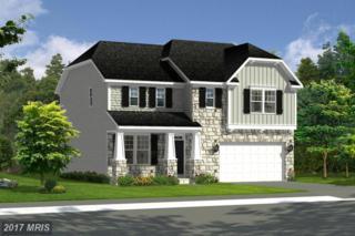 Colonial Drive, Cross Junction, VA 22625 (#FV9868527) :: LoCoMusings