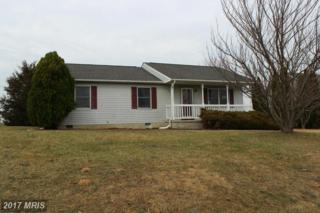 209 Nightingale Avenue, Stephens City, VA 22655 (#FV9872643) :: Pearson Smith Realty