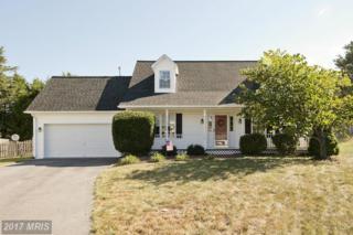 104 Range Court, Winchester, VA 22602 (#FV9874351) :: LoCoMusings